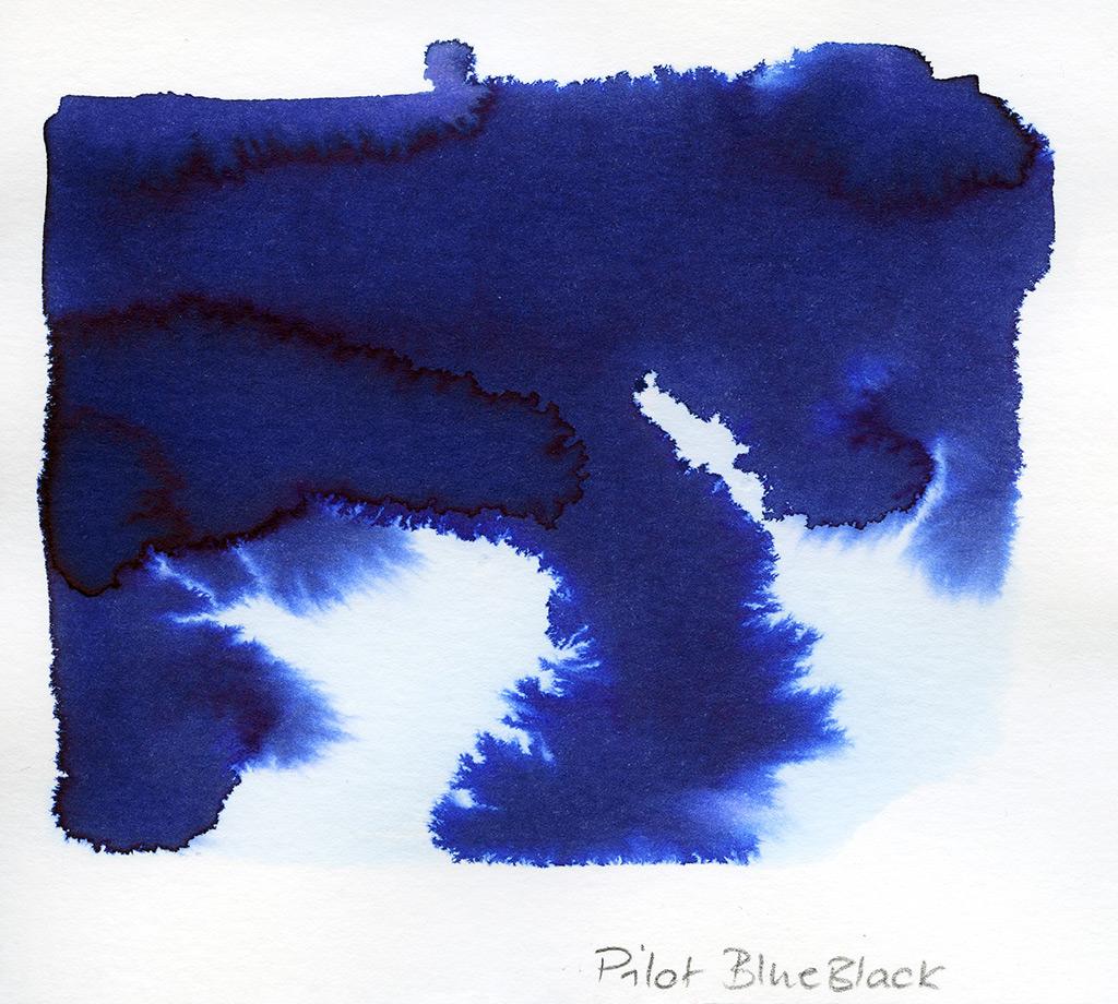 20200810_Pilot_BlueBlack_05