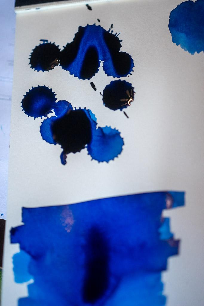 20200819_Waterman_BlueBlack_15