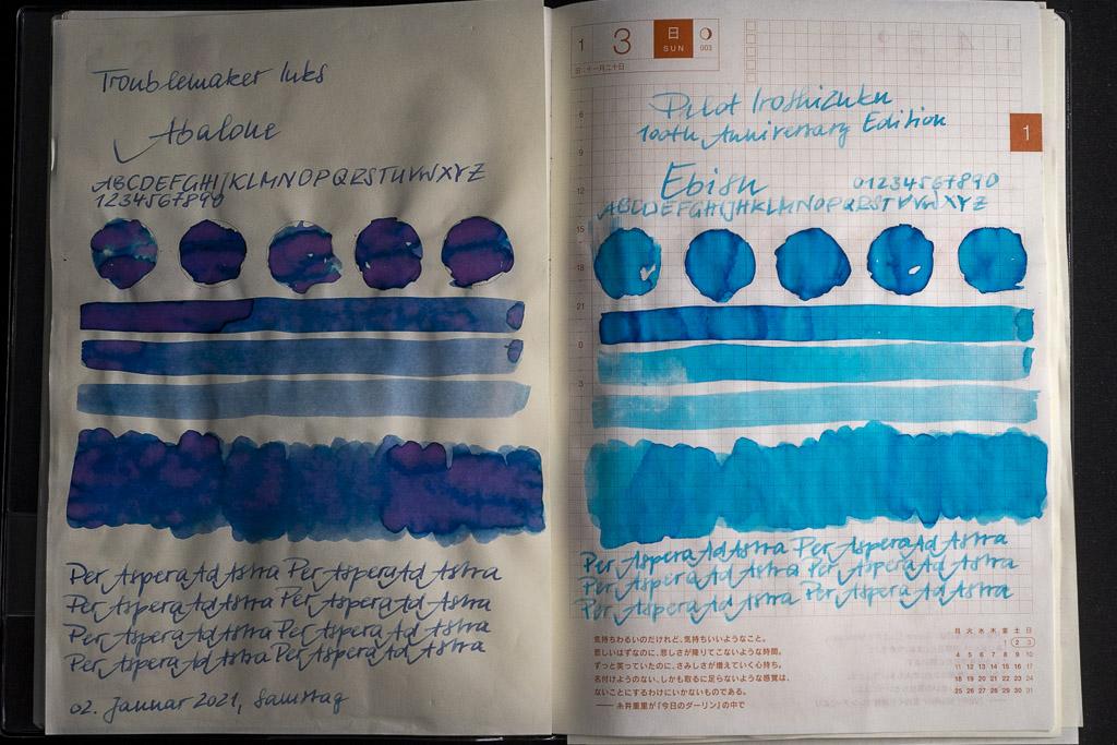 (Troublemakers Ink, Abalone) &Pilot Iroshizuku 100th Anniversary, Ebisu