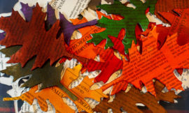 #31Colours of Season: Autumn